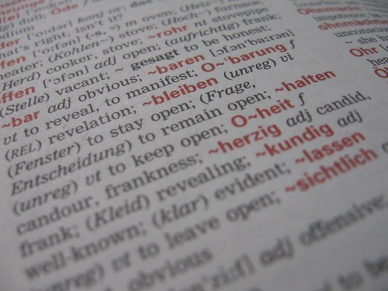 Dictionary – auteur: jwyg (CC BY-SA) – source: https://www.flickr.com/photos/jwyg/3745559121/